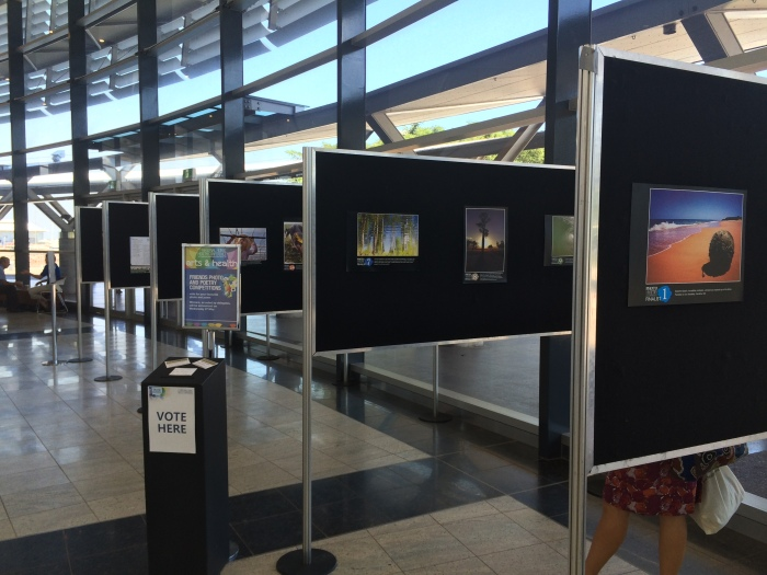 Photo and poetry competition entries
